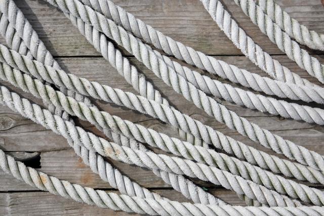 剣心を捕まえるための縄