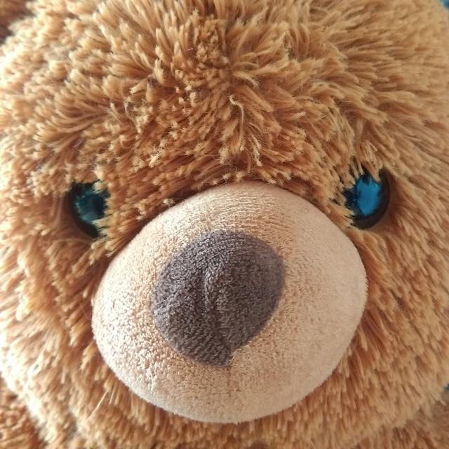テディべアの顔
