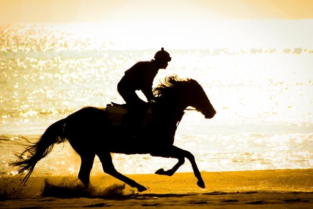 人中の呂布と馬中の赤兎