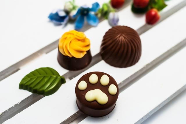 猫の足跡のチョコレート