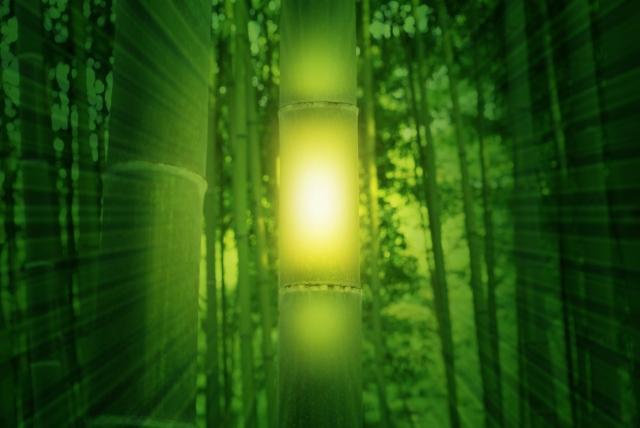 竹のかぐや姫