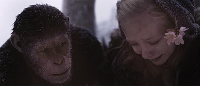 ノヴァに気を使う猿