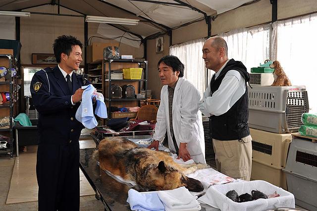犬の出産に立ち会う早川