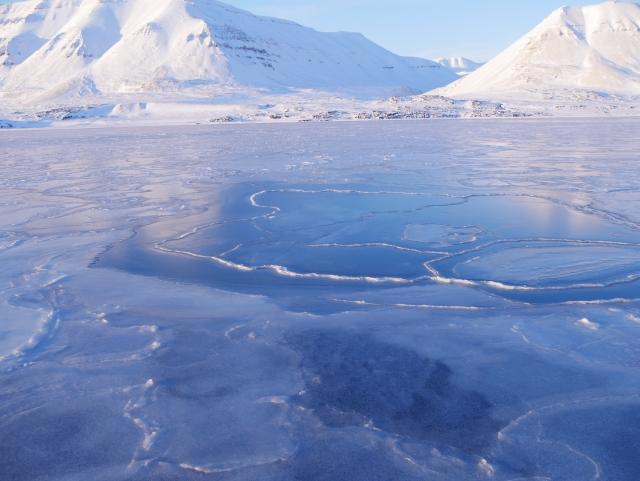 南極海の画像