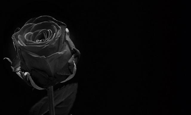 ブラックな画像