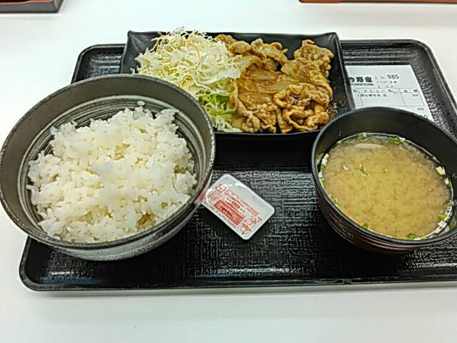 吉野家の豚生姜定食の全体画像