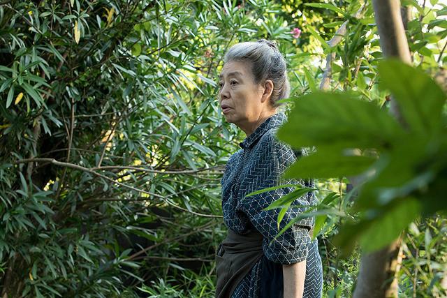 熊谷守一の庭を観察する妻