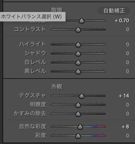 f:id:akira2019foto:20191007180908p:plain