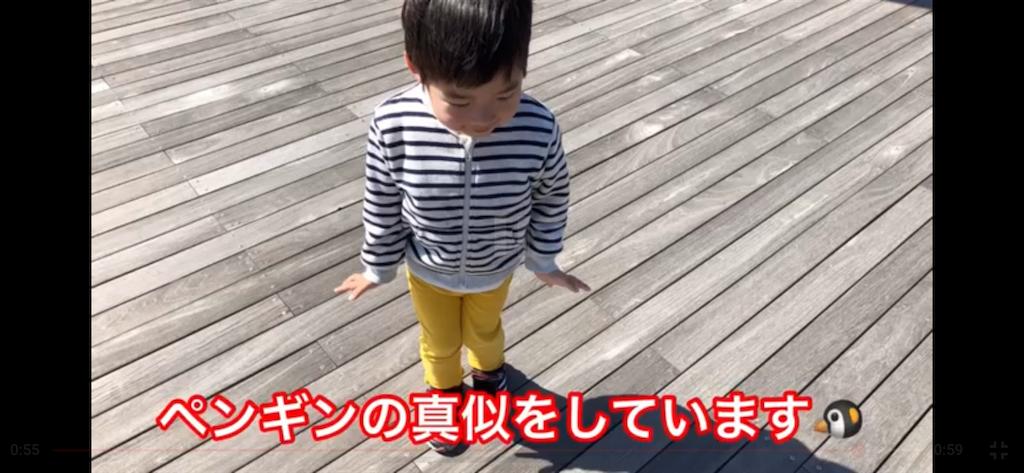 f:id:akira5669:20190503233810p:image
