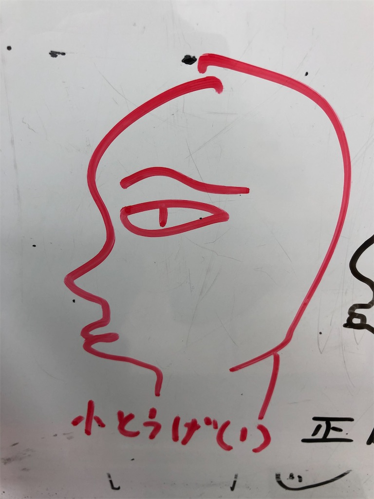 f:id:akira5669:20210213183526j:plain