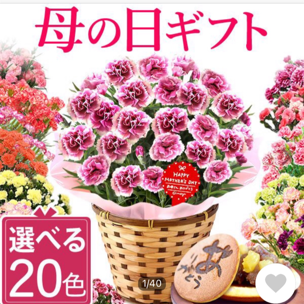 f:id:akira5669:20210509143415j:plain