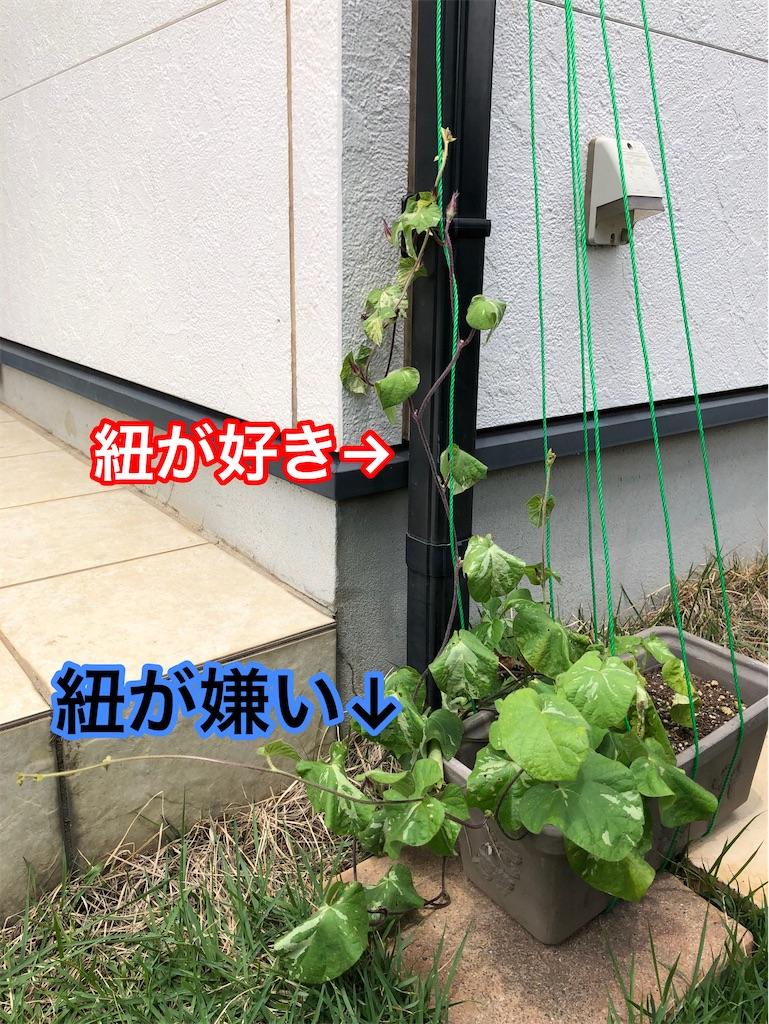 f:id:akira5669:20210626123029j:plain