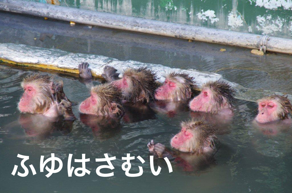 f:id:akira_kayou:20170118101411j:plain