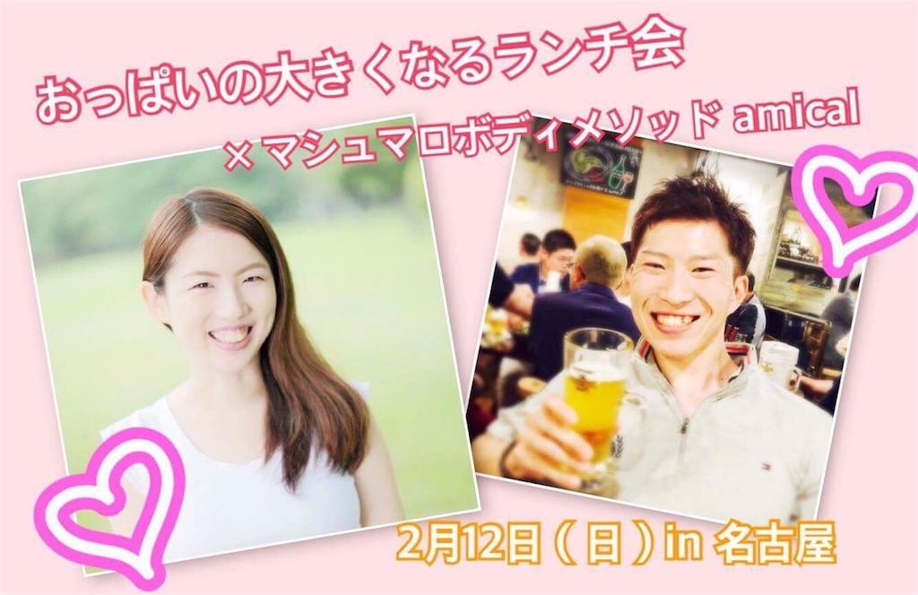 f:id:akira_tsuka:20170116082820j:image