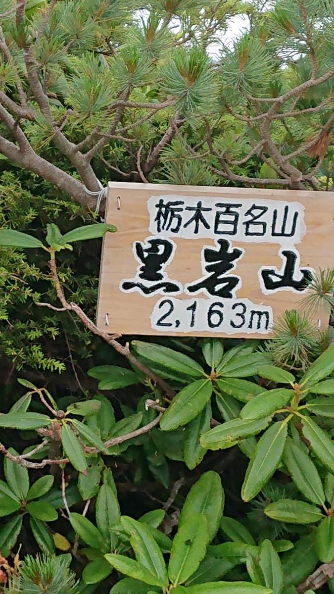 f:id:akirakax:20210728172232j:plain