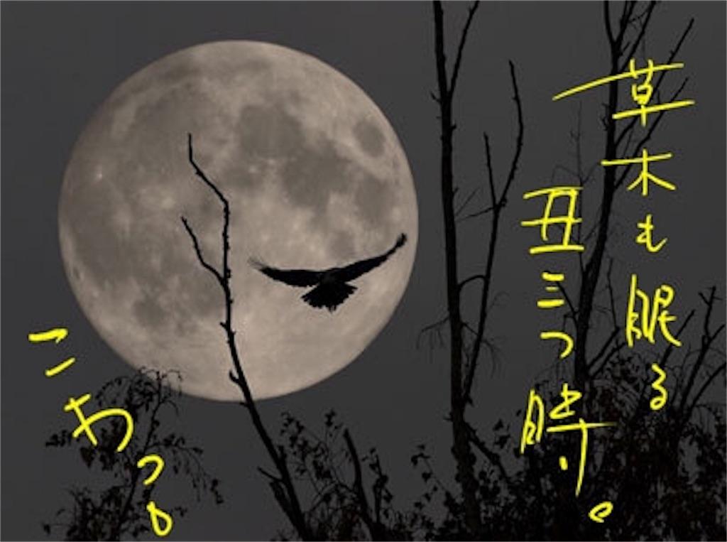 f:id:akiramatsuoka:20180213151612j:image