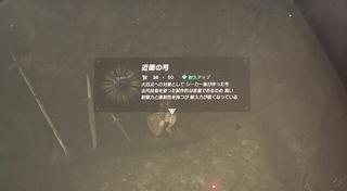5E9FAE78-B663-4D0B-9038-A8381D82B60B.jpg