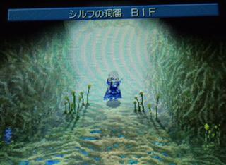 B78666B4-E729-463F-A222-E993455D7500.jpg