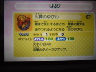 CIMG0980.JPG