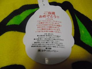 CIMG1111.JPG