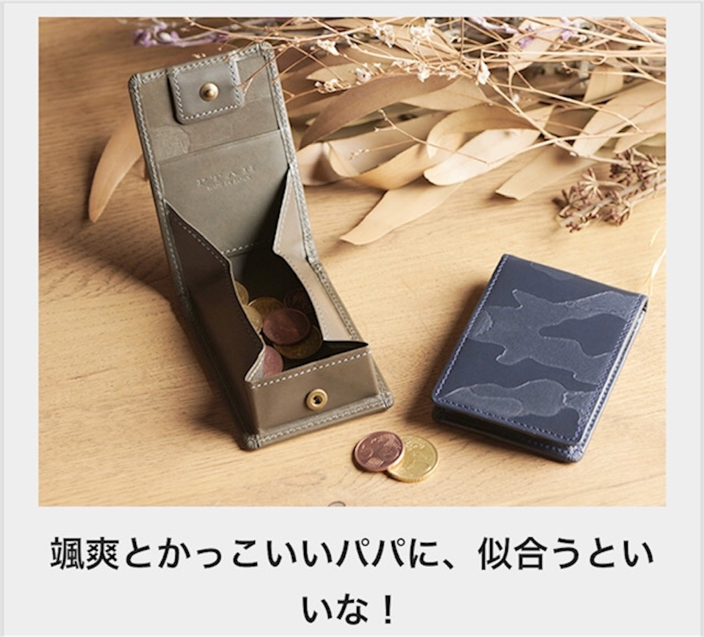 f:id:akirapuch:20190529075932j:image