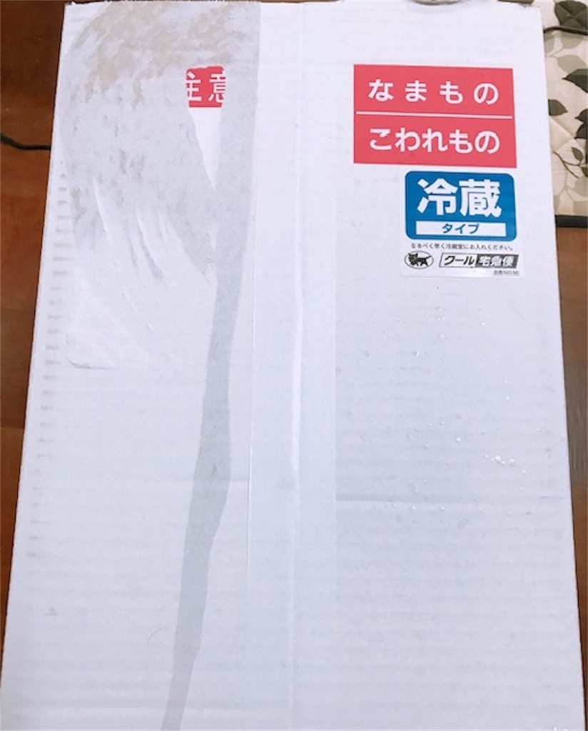 f:id:akirapuch:20200317081504j:image