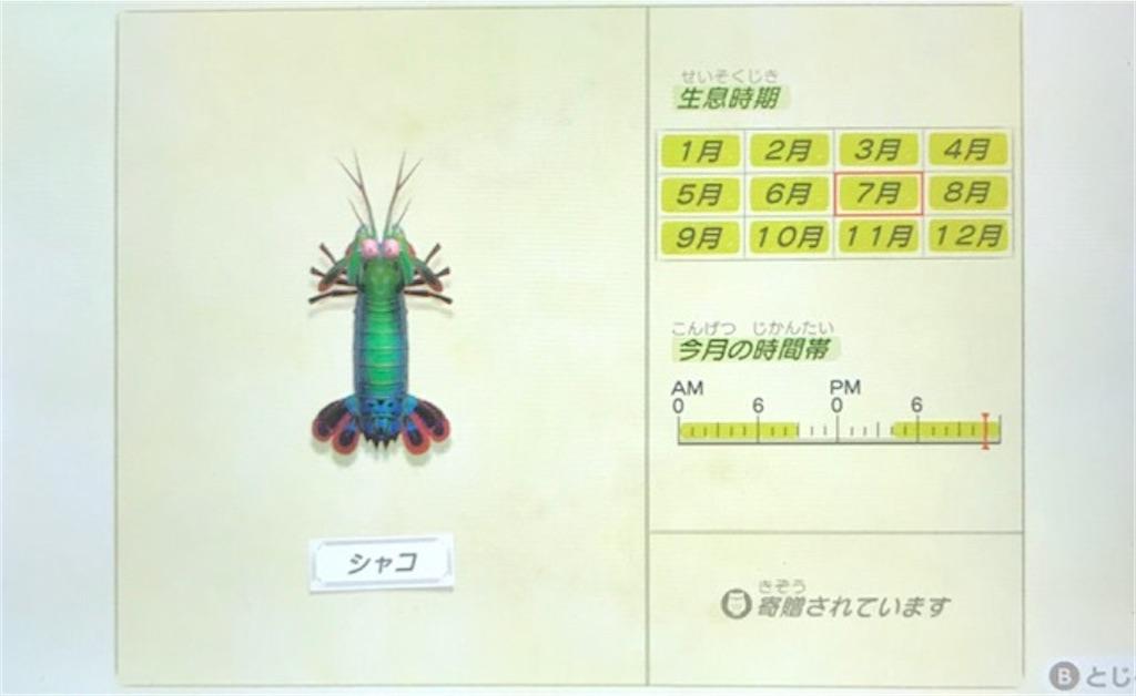 f:id:akirapuch:20200705110036j:image