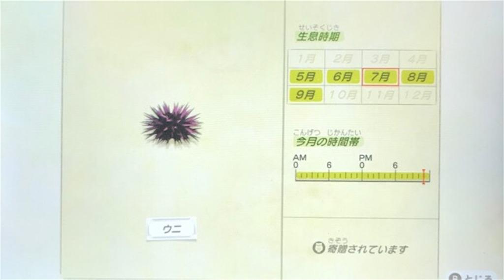 f:id:akirapuch:20200705110044j:image