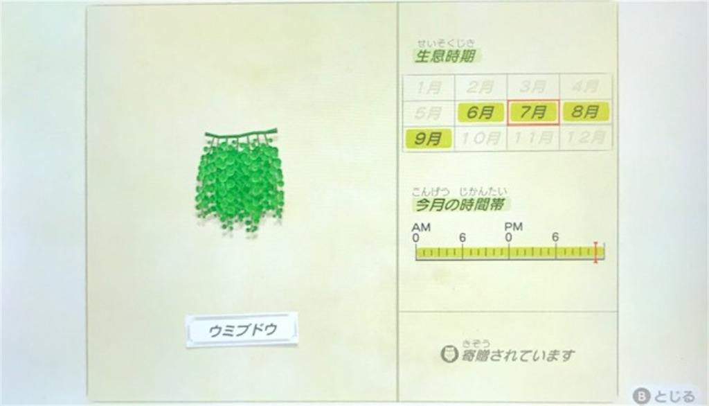 f:id:akirapuch:20200705110059j:image
