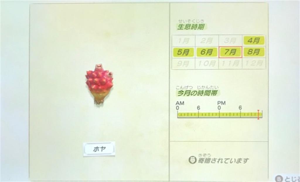 f:id:akirapuch:20200705110105j:image