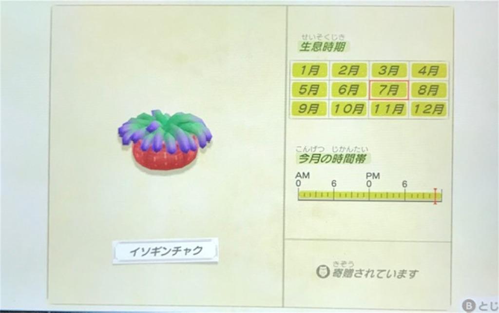 f:id:akirapuch:20200705110108j:image