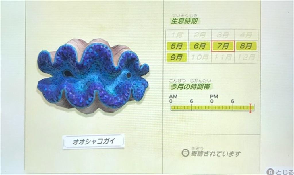 f:id:akirapuch:20200705110114j:image