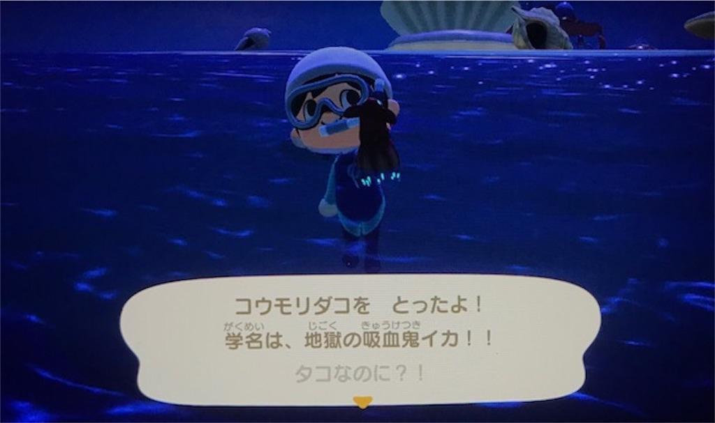 f:id:akirapuch:20200705110120j:image