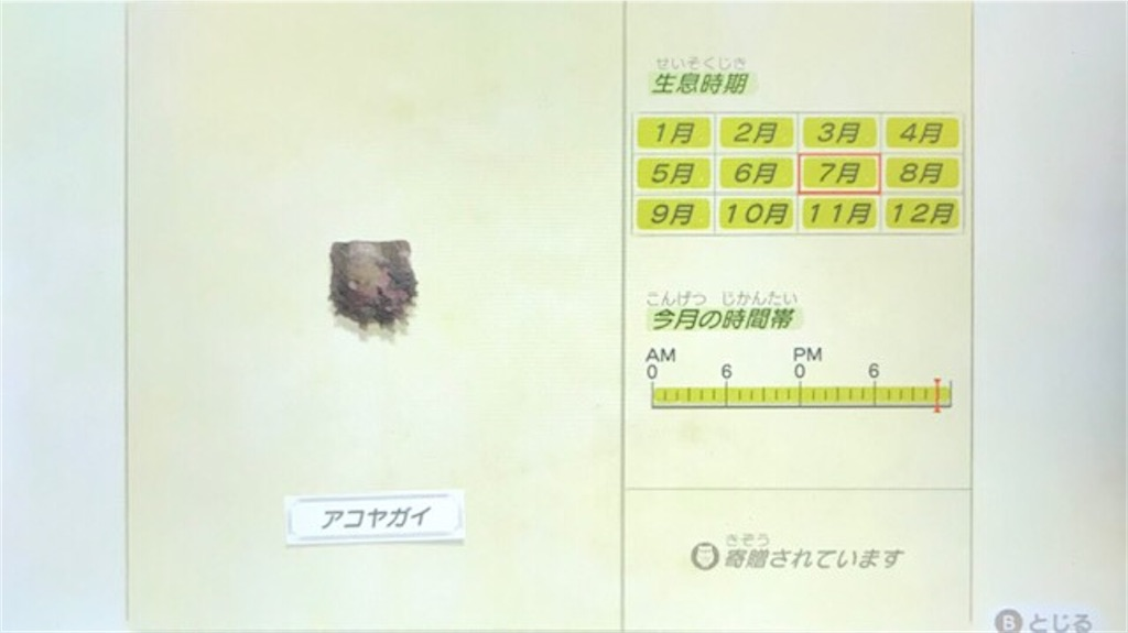 f:id:akirapuch:20200705110124j:image