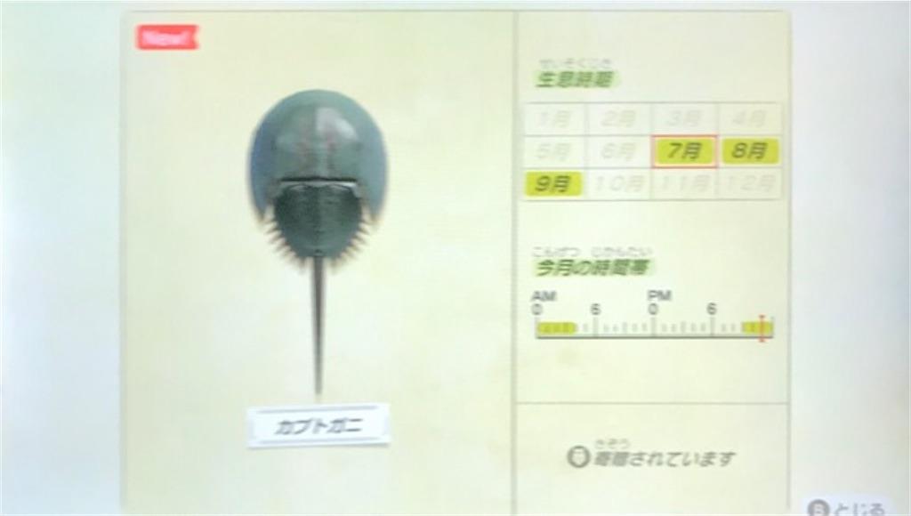 f:id:akirapuch:20200705110126j:image
