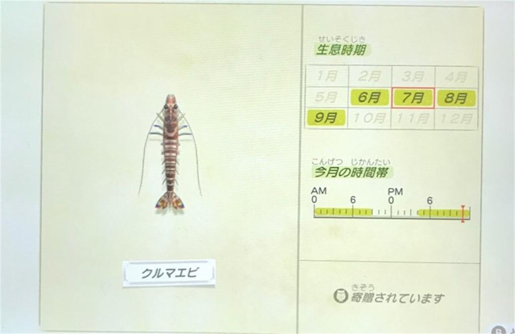 f:id:akirapuch:20200705110129j:image