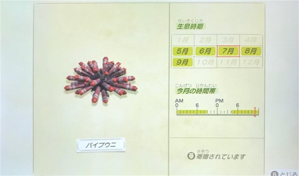 f:id:akirapuch:20200705110133j:image