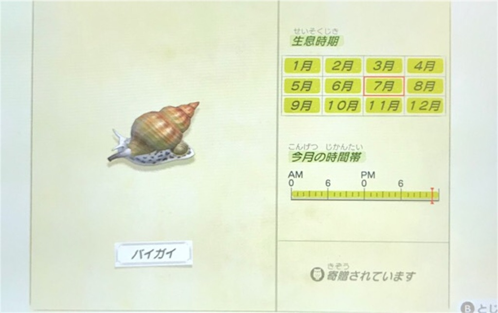 f:id:akirapuch:20200705110135j:image