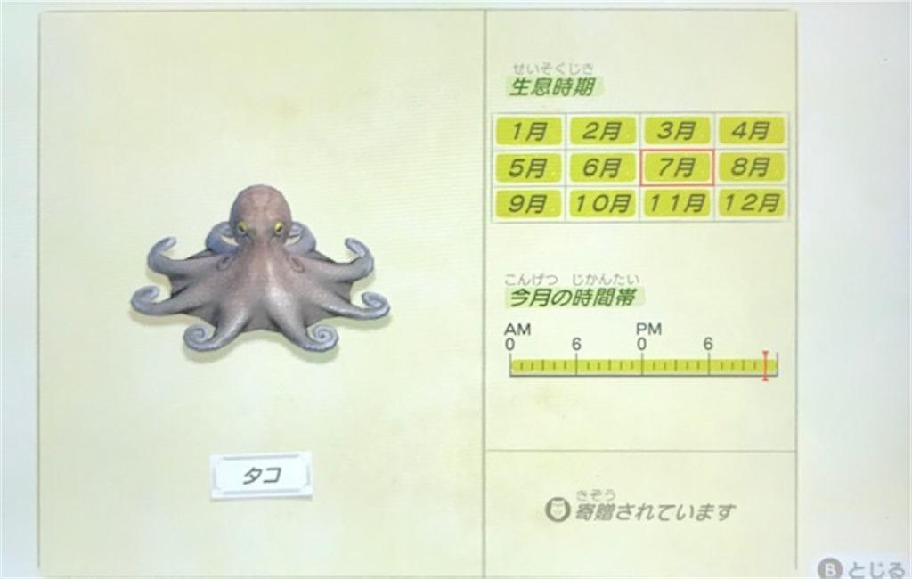f:id:akirapuch:20200705110155j:image