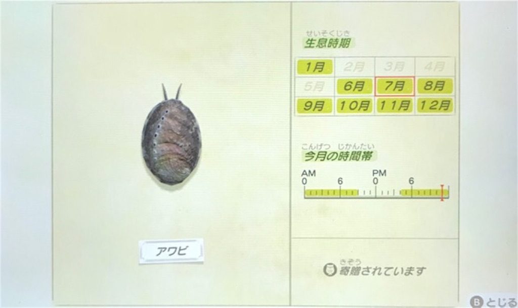 f:id:akirapuch:20200705110201j:image