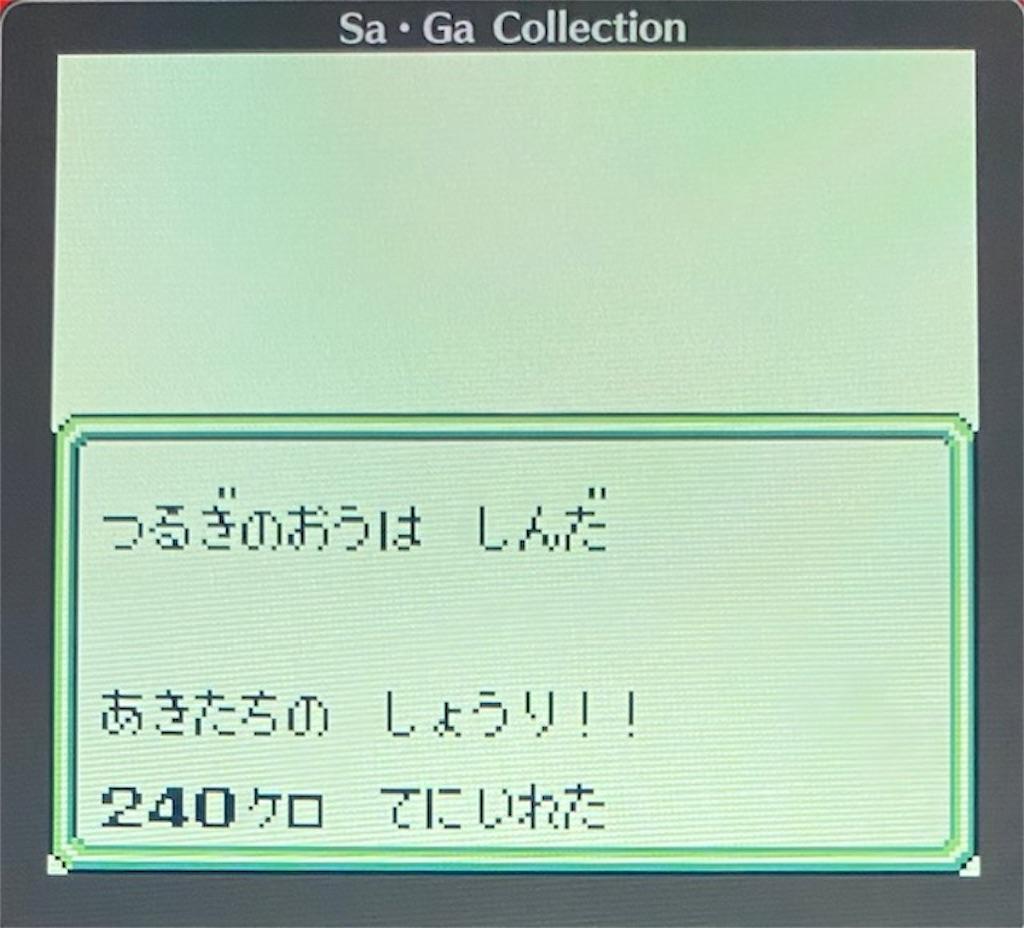 f:id:akirapuch:20210117103541j:image