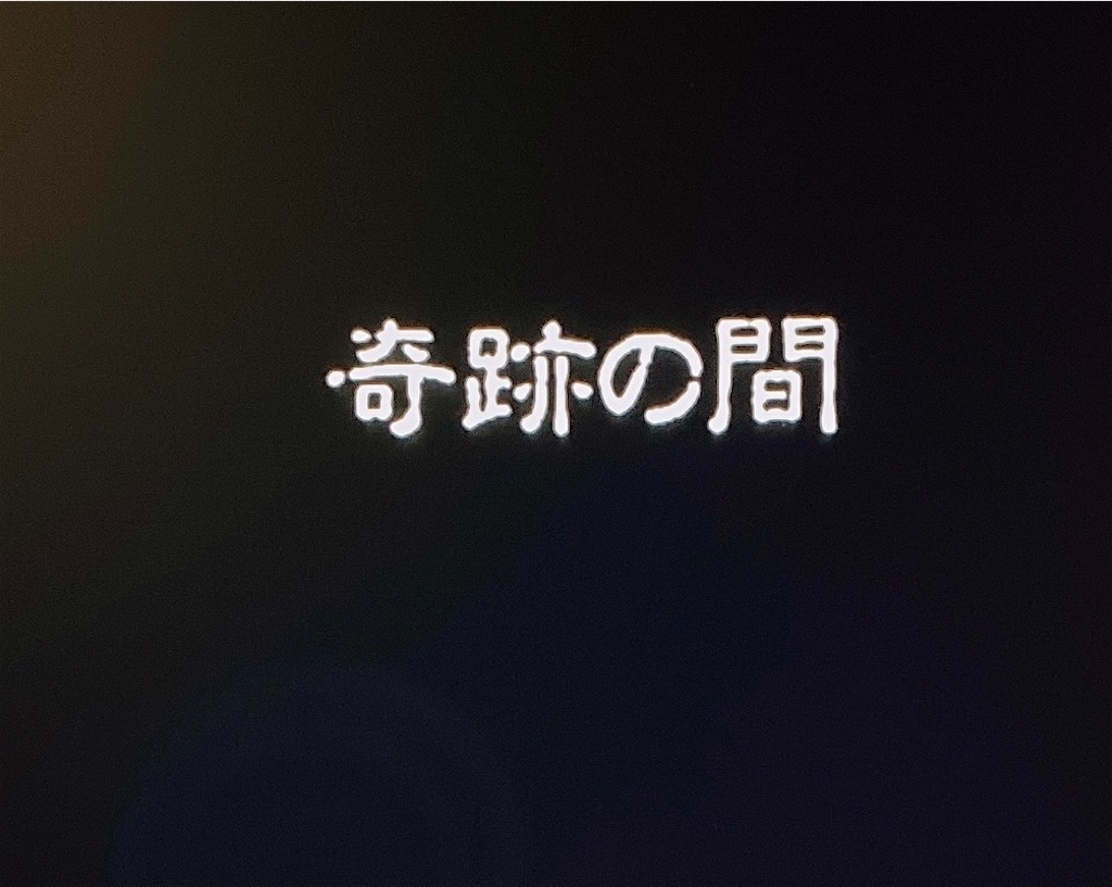 f:id:akirapuch:20210119084424j:image