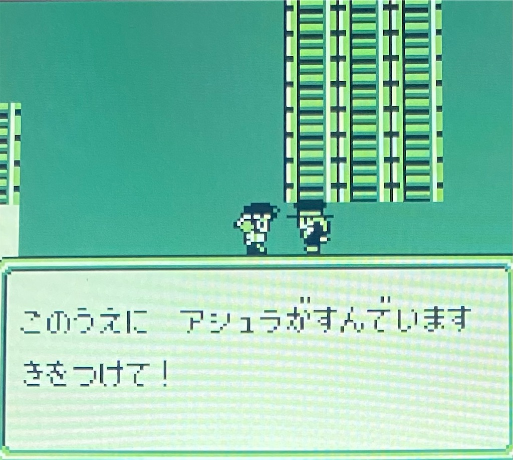 f:id:akirapuch:20210127181219j:image