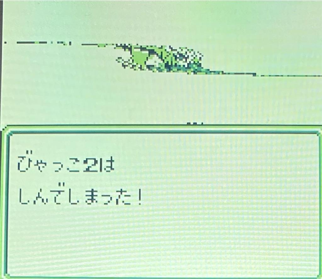 f:id:akirapuch:20210127183046j:image