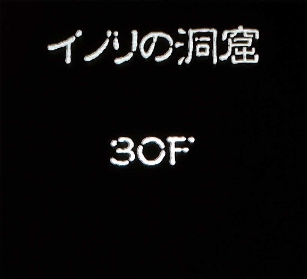 f:id:akirapuch:20210129090012j:image
