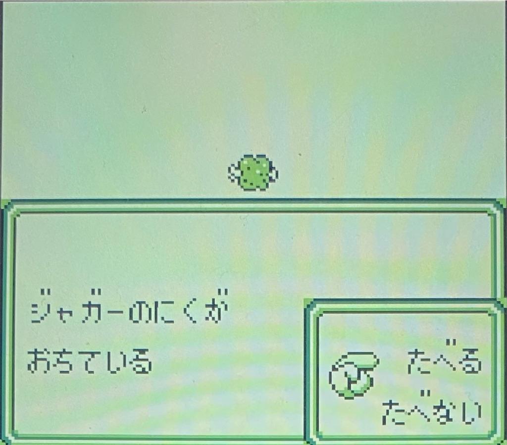 f:id:akirapuch:20210129184258j:image