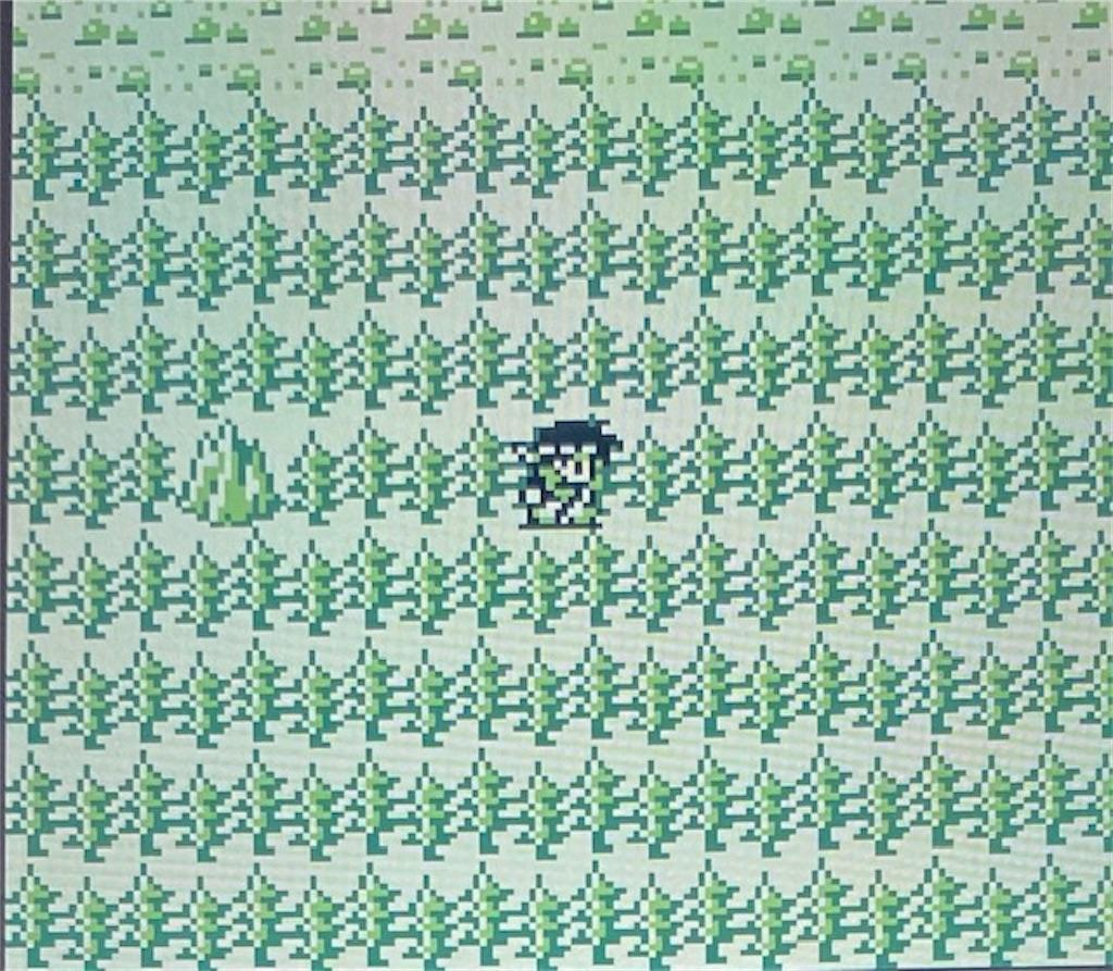f:id:akirapuch:20210129192630j:image