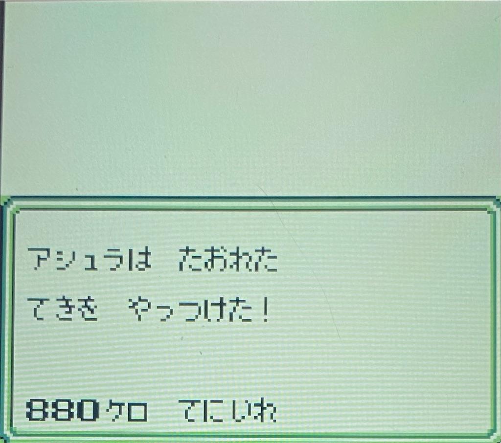 f:id:akirapuch:20210130173318j:image