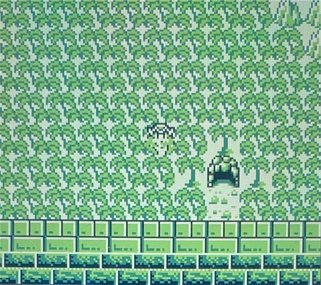 f:id:akirapuch:20210202200002j:image