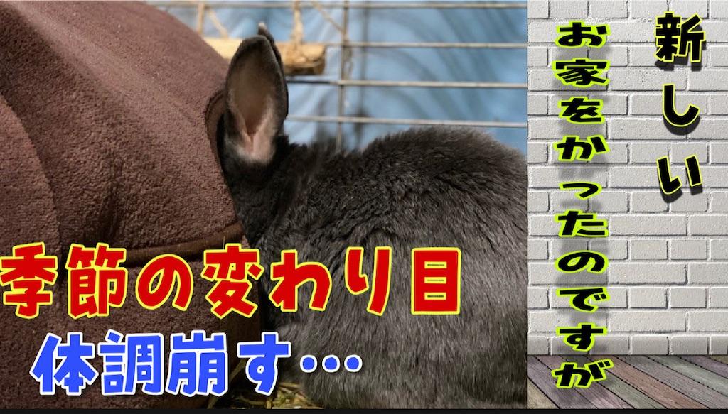 f:id:akirapuch:20210405081904j:image
